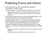 predicting exons and introns