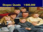 skopec quads 1 600 000