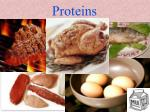 proteins45