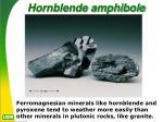 hornblende amphibole