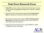 task force research focus