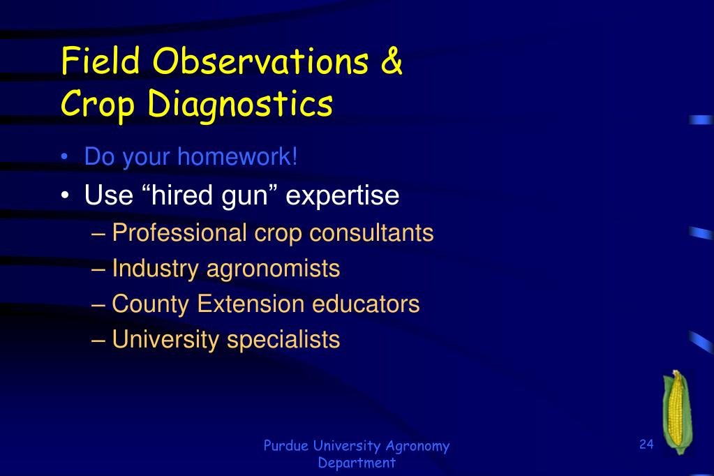 Field Observations &