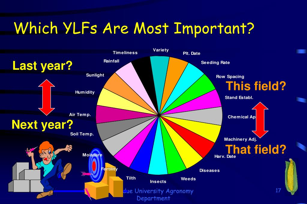 Which YLFs Are Most Important?