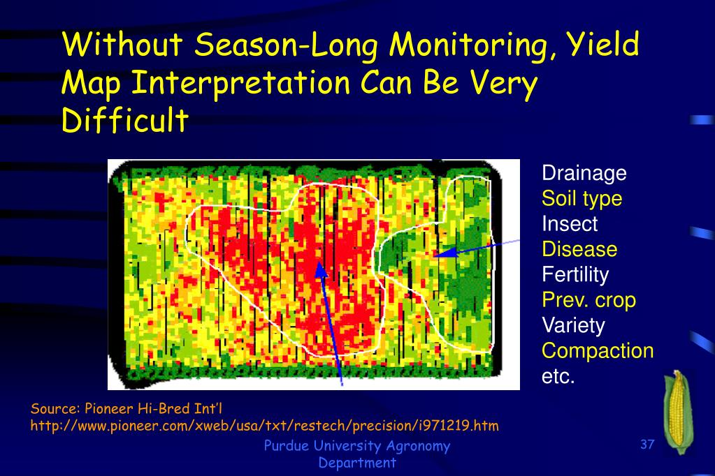 Without Season-Long Monitoring, Yield Map Interpretation Can Be Very Difficult