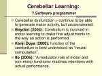 cerebellar learning software programmer