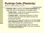 purkinje cells plasticity mial et al 1998 ohtsuki et al 2009