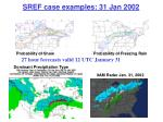 sref case examples 31 jan 2002