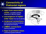 connectivity of prefrontal regions