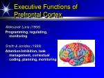 executive functions of prefrontal cortex