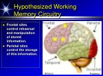 hypothesized working memory circuitry