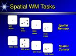 spatial wm tasks