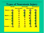 types of neurotoxic injury
