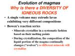 evolution of magmas why is there a diversity of igneous rocks