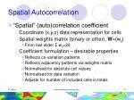 spatial autocorrelation12