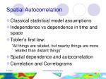 spatial autocorrelation4