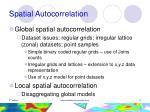 spatial autocorrelation6