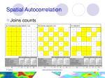 spatial autocorrelation9