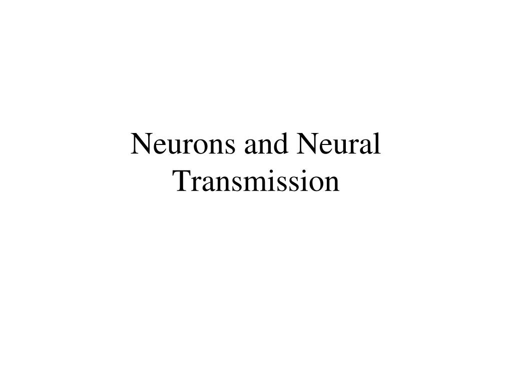 neurons and neural transmission l.
