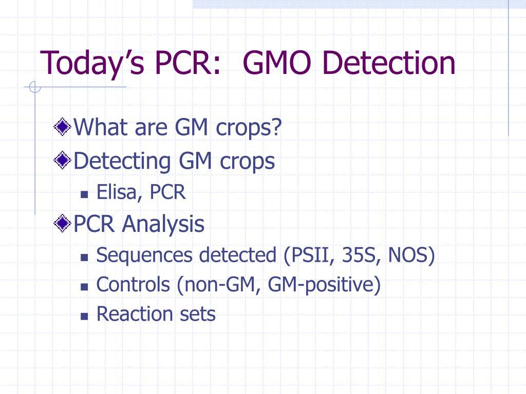 today s pcr gmo detection l.