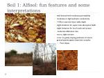 soil 1 alfisol fun features and some interpretations
