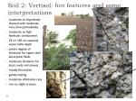 soil 2 vertisol fun features and some interpretations