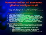 senzomotori na ali zaznavno gibalna inteligentnosti