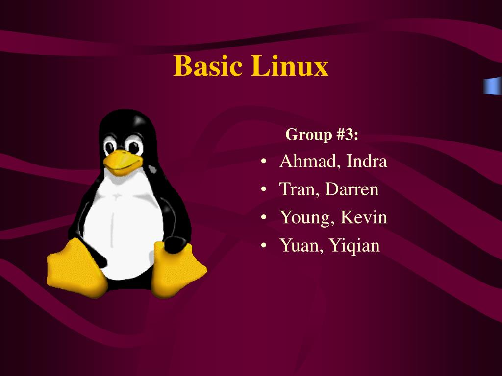 basic linux l.