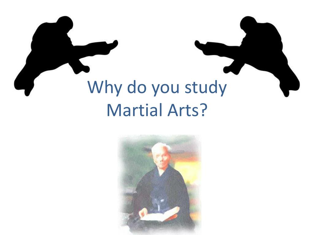 why do you study martial arts l.