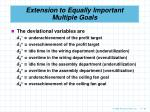 extension to equally important multiple goals63