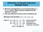 extension to equally important multiple goals64