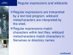 regular expressions and wildcards
