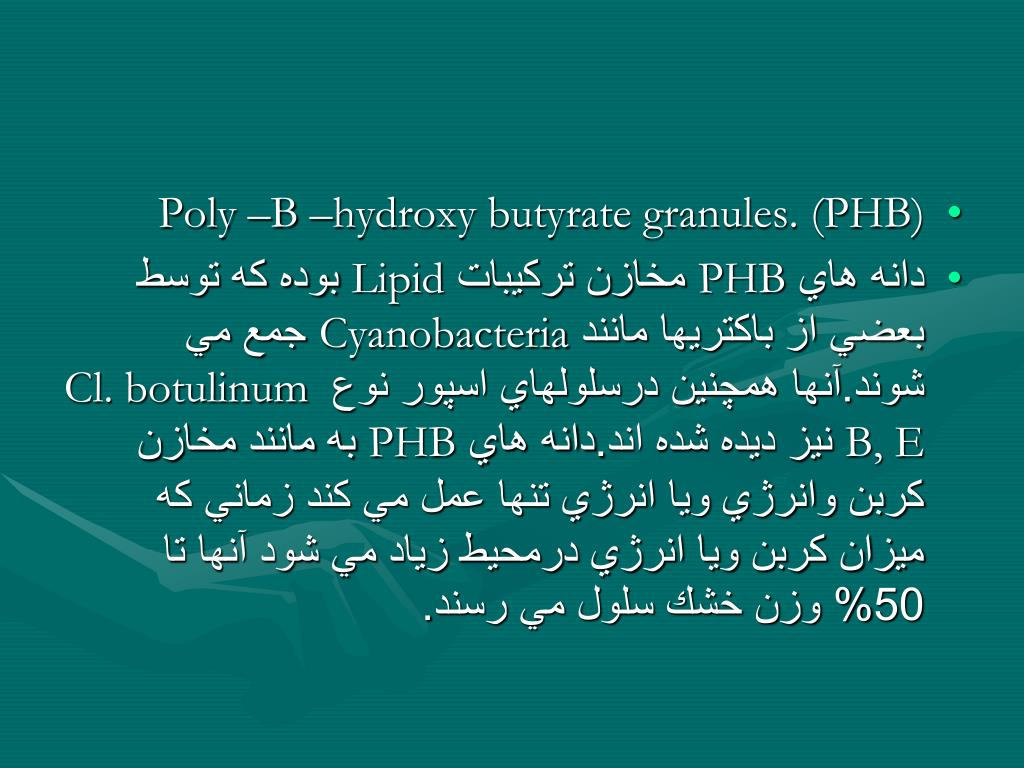 Poly –B –hydroxy butyrate granules. (PHB)