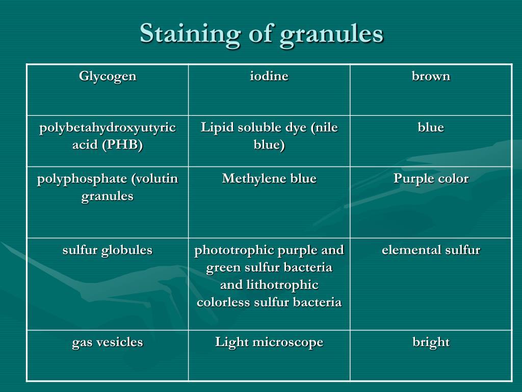 Staining of granules