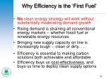 why efficiency is the first fuel