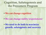 cognition salutogenesis and the prosumers program