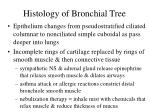 histology of bronchial tree