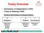 treaty overview