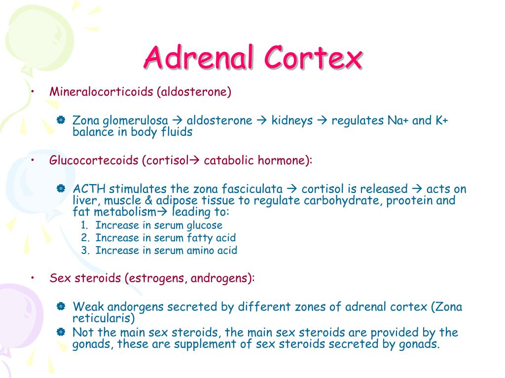 PPT - Endocrinology 2 PowerPoint Presentation - ID:356268