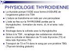 physiologie thyroidienne