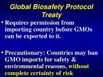 global biosafety protocol treaty