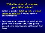 will other states countries grow gmo wheat
