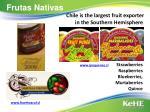 frutas nativas