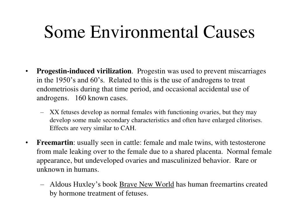 Some Environmental Causes