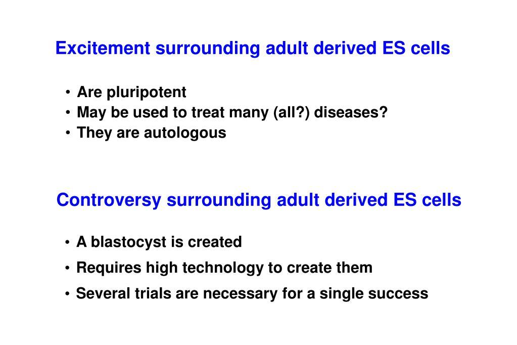 Excitement surrounding adult derived ES cells