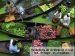 vendedores de verduras en el lago dal srinagar en el kashmir