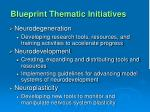 blueprint thematic initiatives