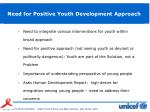 need for positive youth development approach