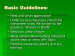 basic guidelines13