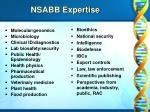 nsabb expertise