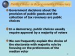 public choice in representative democracy